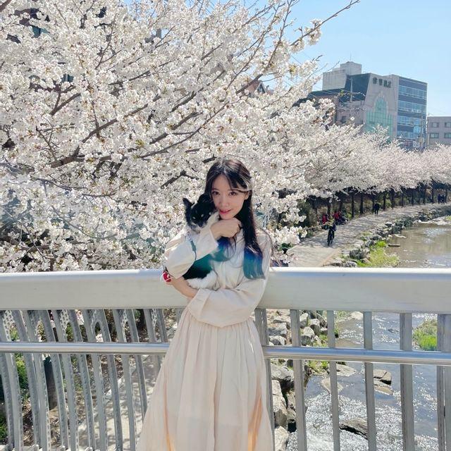 서하룸 - [서하룸] 벚꽃 롱 원피스