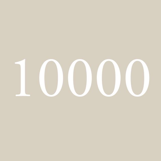 프리몬트 - FleaMarket 10000